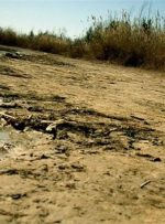واریز ۵۰ درصد اعتبار مصوب دولت در خصوص رفع مشکلات آبی خوزستان