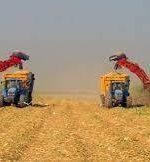 اشتغالزایی از طرحهای صنعتی کشاورزی در خوزستان